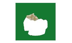 logo-_0001_oliveira_logo_c